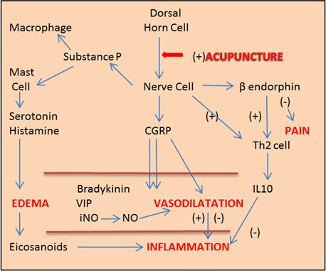 Acu-inflammation
